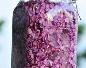 Пока еще цветет сирень наполните банку фиолетовыми цветками и растительным маслом